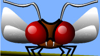 Inkscape Insect